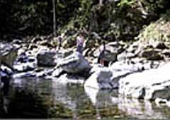 入川渓流観光釣場